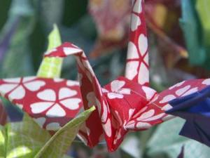 Cancer patients at Duke University Medical Center find origami is a great time killer, as they wait for appointments and treatments.