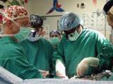 fetal surgery