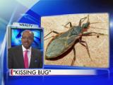 'Kissing bug' spreads infection in S. America