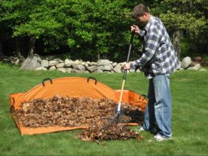 Smart tips to make fall lawn care easier