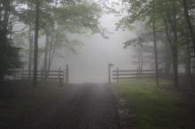 Bill Leslie's fog pictures