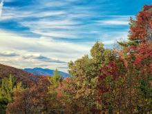 See fall foliage and other seasonal photos from visitors and professional photographers, and upload your images.