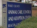 Wake shelter kills 'Pet of the Day' dog