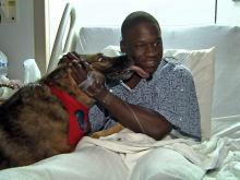 Brit, a military therapy dog, licks Spc. Alphonzo Campbell at Womack Army Medical Center on Fort Bragg.