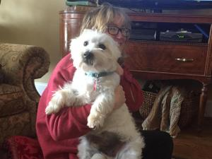 Brody was safe indoors Tuesday afternoon after falling into icy water.