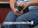 May 23, 2015 Pet of the Day