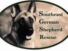 Southeast German Shepherd Rescue