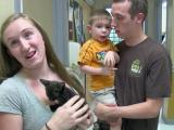 Clear the Shelters helps hundreds find new four-legged friends