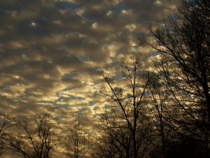 Sky of Wonder