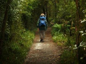"""The 33.5-mile Milford Track in Fiordland, New Zealand, has been called """"the finest walk in the world,"""" with its mix of mountains, rivers, waterfalls and rain forests."""