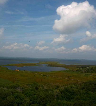 View of the Currituck Sound from the top of the Currituck Lighthouse.
