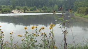 DeHart Botanical Gardens, off U.S. Highway 401 near Louisburg in Franklin County