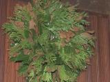 Weston Farms wreath