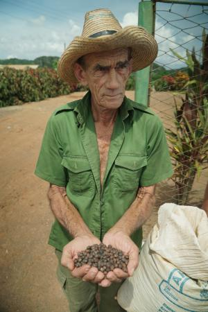 American farmers met with Cuban farmers to discuss crops, soil, climate, etc