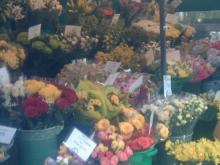 Flowers for sale a sure sign of spring.