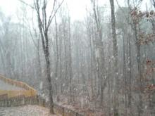 Snow coming down in Wilton