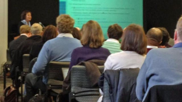 UNC Chancellor Carol Folt addressed an assembled faculty council.
