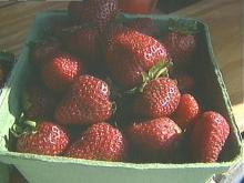 Berry Farmers Say Cary is Picking on Them