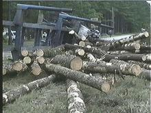 Log Truck Accident Injures Two