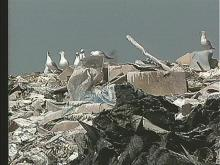 Cumberland County landfill