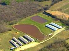 Orange County Hog Farmer In Court, Wants His Farm Reopened