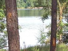 Harris Lake Park offers a serene setting.(WRAL-TV5 News)