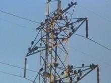 Hundreds of Turkey Vultures Invade North Durham Neighborhood
