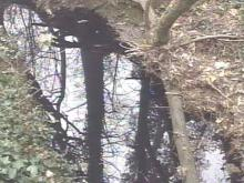 Investigators Look For People Responsible For Vance County Oil Spill
