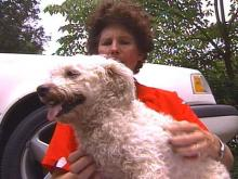 Peek-a-Boo and her owner, Martha Brown, were reunited Thursday .(WRAL-TV5 News)