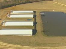 Independent Hog Farmers Face Uncertain Future After Smithfield Foods' Decision