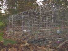 Fayetteville Residents, Pets At Apartment Complex May Have Been Exposed To Rabies
