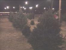 Thieves have taken 12 trees from the Booger Mountain Christmas lot on Duke Street in Durham. The proceeds were supposed to go to a local boy scout troops.(WRAL-TV5 News)