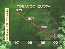Farmers Welcome Small Tobacco Quota Increase