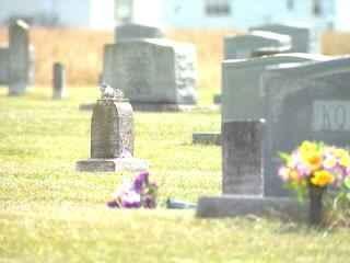 Calypso Graves