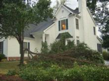 A severe thunderstorm knocked down at tree at a home at 217 McCleary Court in Raleigh. (Photo courtesy of Amanda Womble)