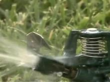 Drought Has Raleigh Looking at Sprinkler Ban