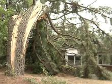 Raleigh Storm Victim: 'I'm Blessed to Be Alive'