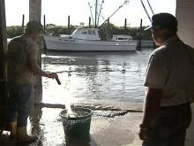 North Carolina Commercial Fishing Industry Taking a Spill