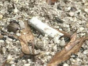 Raleigh Looks to Put 'No Smoking' Signs in Parks