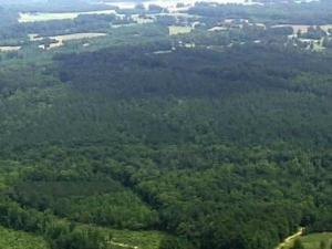 "Carolina Sunrock LLC is seeking a special-use permit to create a quarry near Louisburg. Neighbors say ""no,"" but others say job-creation is a major attraction."