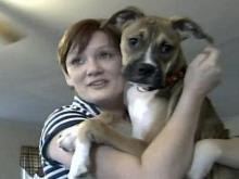 Rocky Mount dog scares away intruder