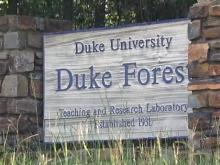 Duke Forest opens Monday to deer hunters