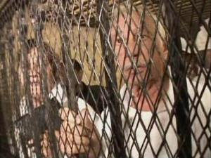 Handcuffed and inside a cage, Louis Andros and Iris Botros appear in a Cairo courtroom Saturday, March 14, 2009, on charges of trying to buy children, using forged documents and helping to forge documents. They say they were trying to adopt a boy and girl and didn't know adoption was against Egyptian law. (Photo courtesy of CNN)