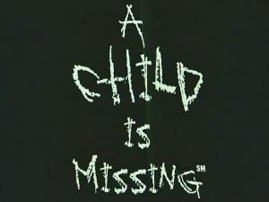 A Child is Missing, a nonprofit in Fort Lauderdale, Fla., sends out automated phone calls alerting residents when a person is reported missing. The nonprofit was involved in 1,800 missing persons cases in 2008, including 33 in North Carolina.