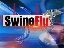 Swine flu graphic -- DO NOT USE
