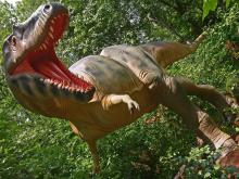 Follow the tracks of dinosaurs in the Late Cretaceous period at the Museum of Life and Sciences in Durham.