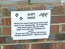 Residents on rabid foxes alert