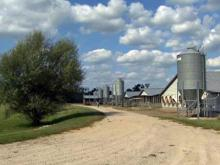Neil Strother's hog farm in Wilson County.