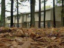 Raleigh considers limits on landscape materials