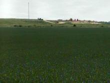 Scotland County farm fields